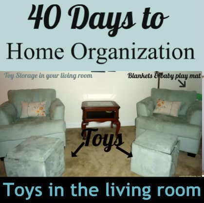 organize toys in the living room