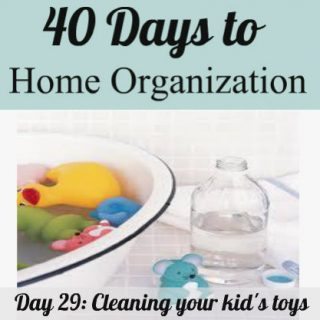 Day 29: Cleaning toys