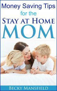 Money Saving Tips for the Stay at Home Mom ebook
