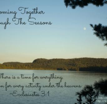 raising kids through the seasons