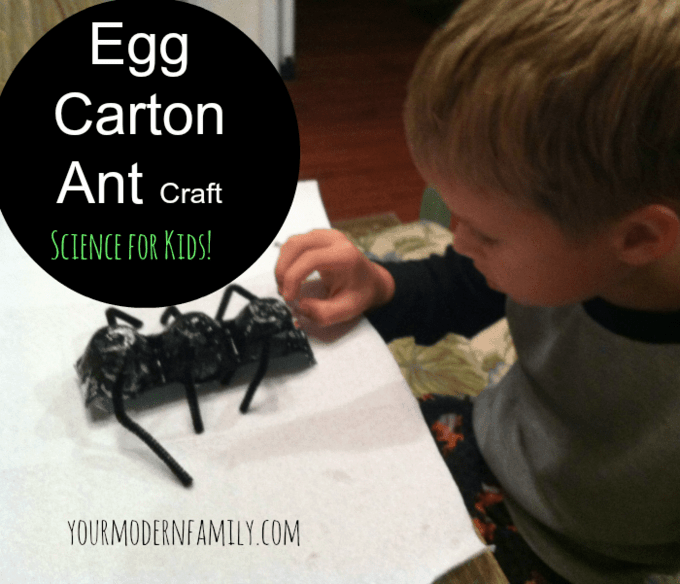 egg carton ant craft
