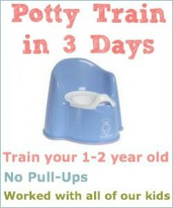 Potty Train in 3 days