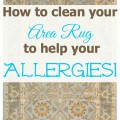 how to clean your area rug to help your allergies