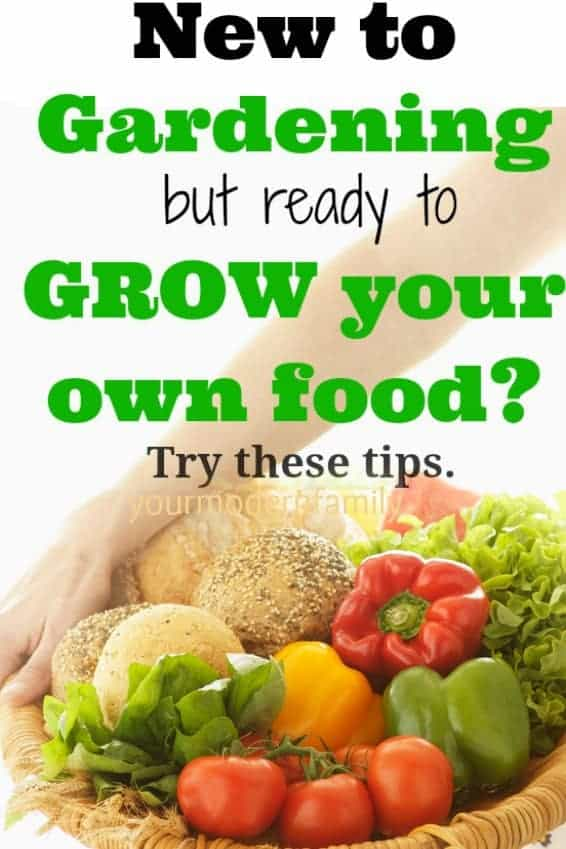 new to gardening but ready to grow your own food? Tips to help