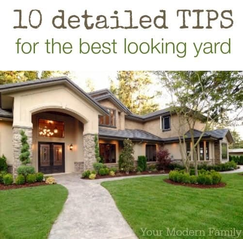 10 tips for the best yard in the neighborhood!