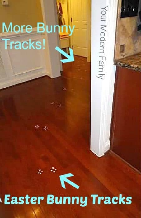 Easter Bunny tracks on the floor.