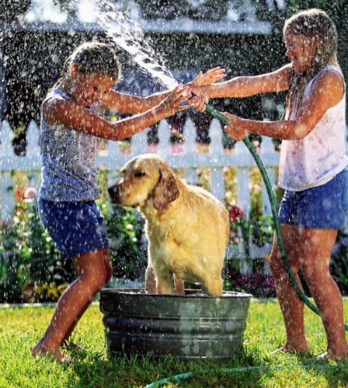 5 Great Outdoors Activities for Kids