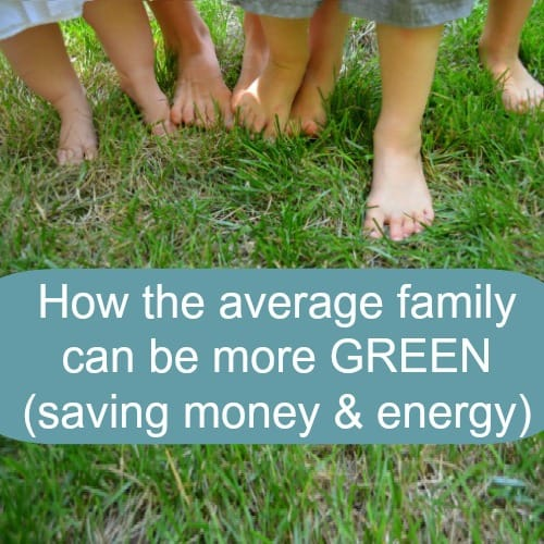 How the average family can be more green