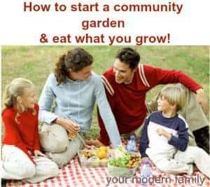 DIY community garden at your church