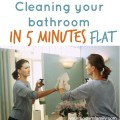 cleaning bathroom in 5 minutes flat