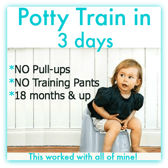 How to potty train in 3 days video