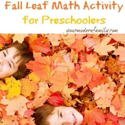 Fun fall math lesson for preschoolers using leaves & twigs!!!