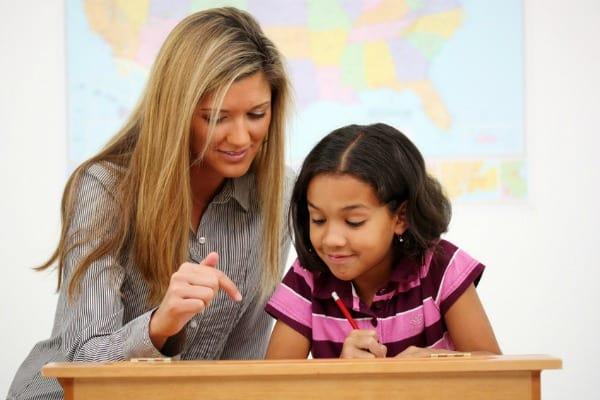 Primary homework help Buy custom written Literature essay