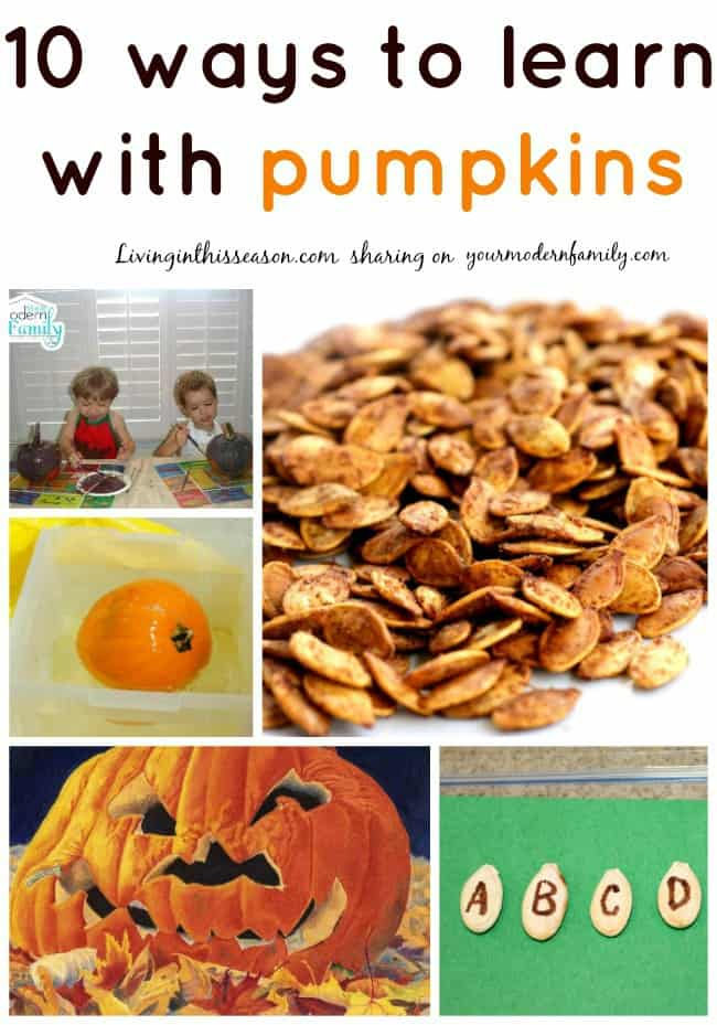 learn with pumpkins