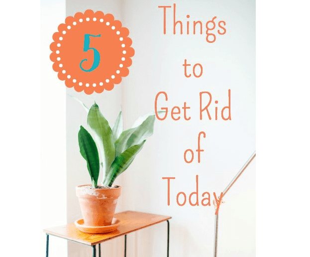 A potted plant on a table with text above it.
