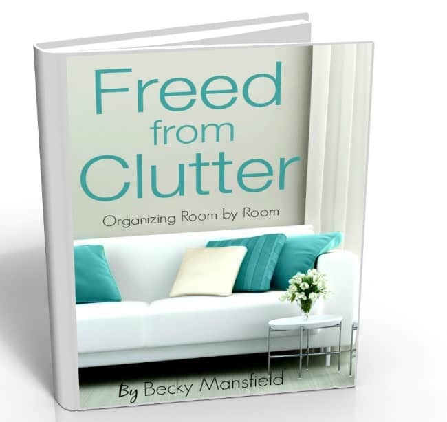 pin for freed from clutter book