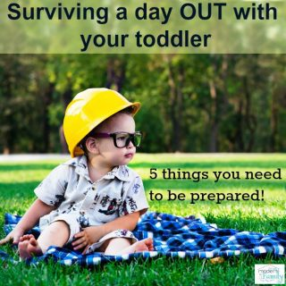 Surviving a day out with toddlers – tips to help!
