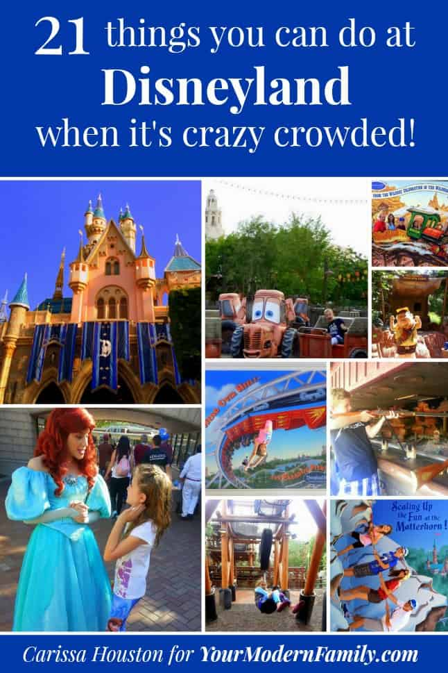Pictures of Disneyland theme park with a variety of rides and attractions.