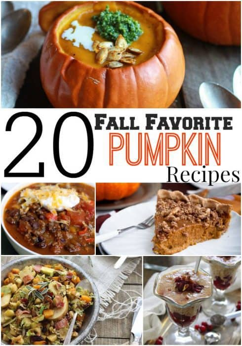 A close up of many different types of food made with pumpkins.
