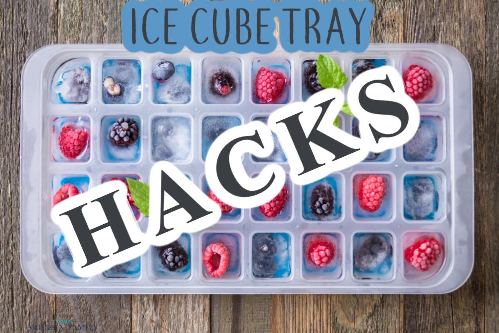 Ice Cube Tray Hacks - uses for ice cube trays