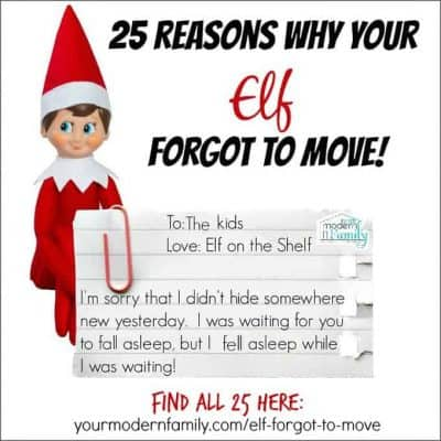 25 reasons why our Elf forgot to move