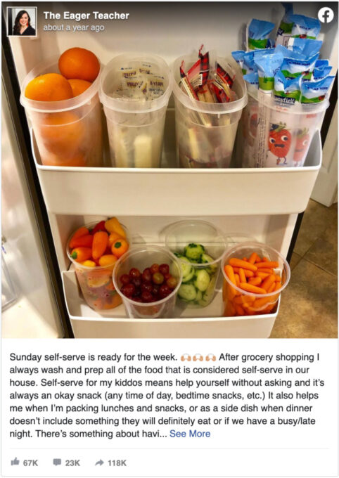 Food in ready-made containers in refrigerator