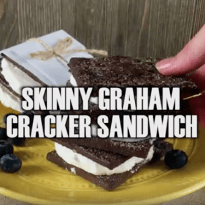 skinny Weight Watcher ice cream sandwich - 1 weight watcher point