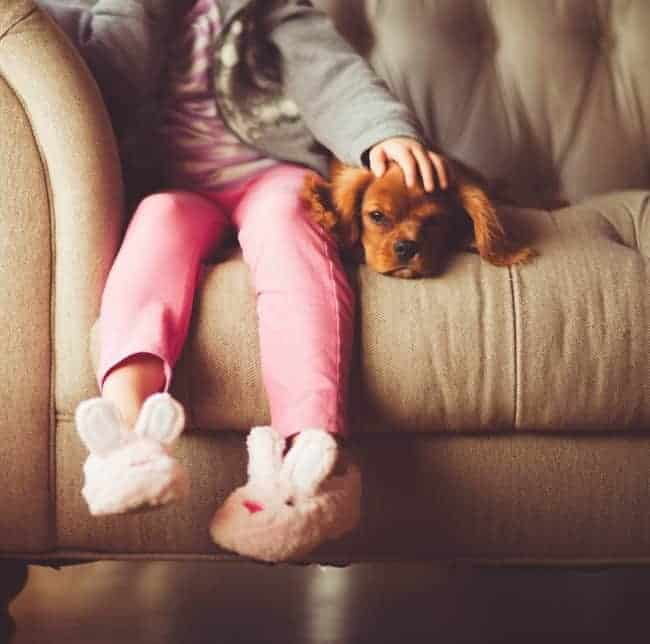 A little girl sitting on a couch with a small dog lying beside her.