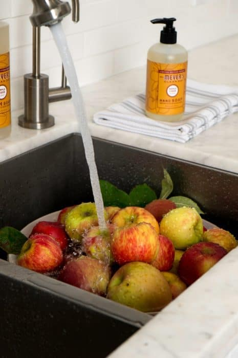 apple_wash_sink_mmcdseasonal-1