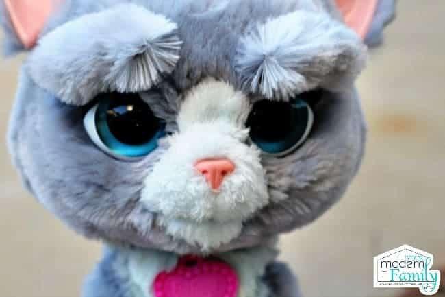 A close up of a small stuffed animal.