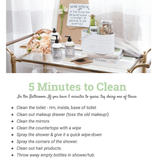 5 Minutes to Clean (bathroom) Printable