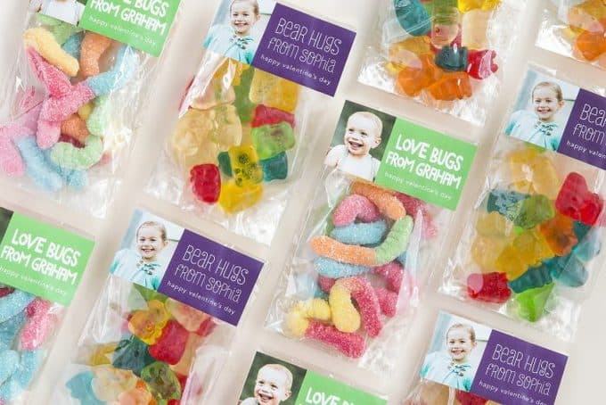 Numerous bags of gummy bears and gummy worms with pictures of babies and text.