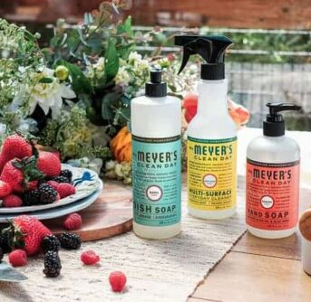A variety of Meyer's cleaning products with a plate of berries beside them.