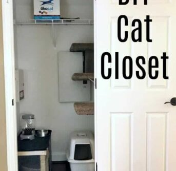 A close up of a closet set up with all cat supplies and items.