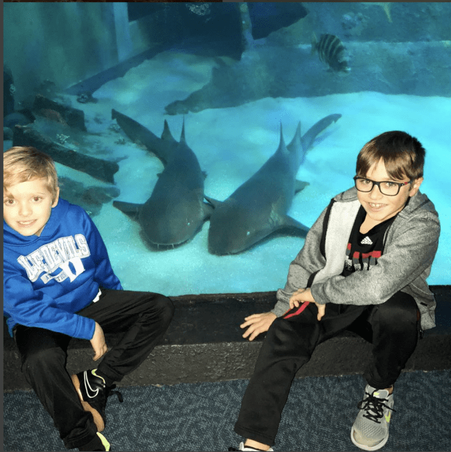 Two boys sitting in front of an aquarium with two sharks swimming around.