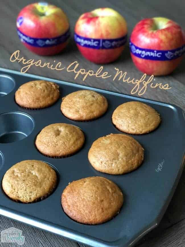 Organic Apple Muffins Recipe