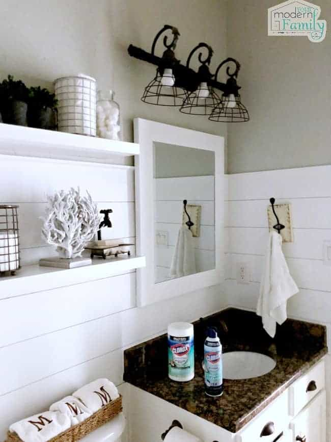 View of a bathroom with Clorox cleaning products on the counter.