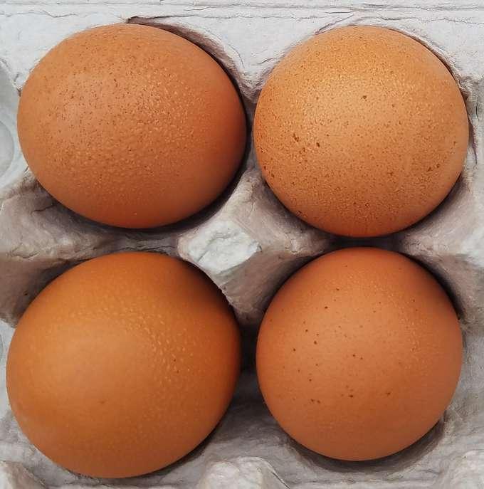 Four eggs in a carton.