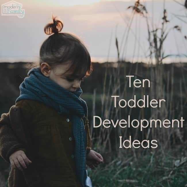 Ten Toddler Development