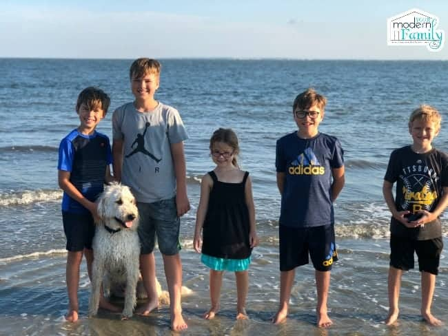 A group of people standing on a beach with a dog.