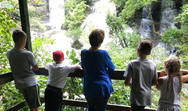 A group of people standing by a wooden railing looking at a waterfall.