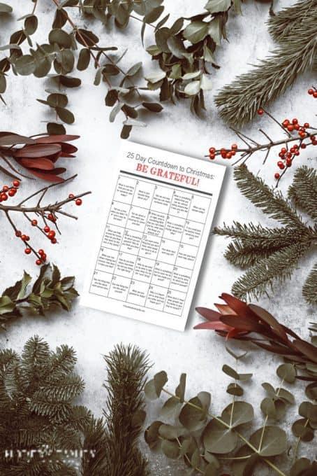 Christmas Kindness Countdown (1)