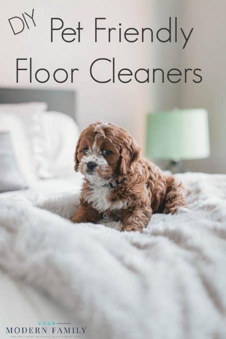 DIY pet friendly floor cleaners