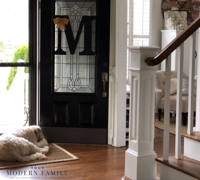 A room with an open front door with a dog laying on the floor.