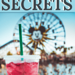 21 Disneyland Secrets - what to do in Disneyland when it's crowded