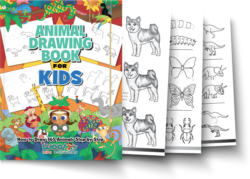 A close up of many different coloring books.