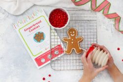 A gingerbread man on a cooling rack.