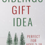 No money gift idea for siblings