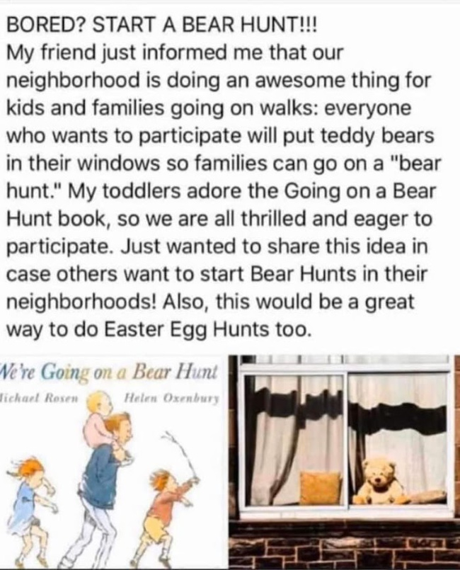 Neighborhood Bear Hunt - hide bears in the windows of your house & your neighbors can see them!